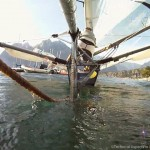 Moth_Action_LakeGarda_TAIS1