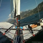 Moth_Action_LakeGarda_TAIS16